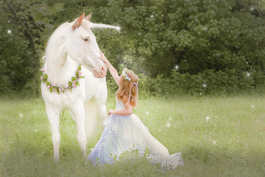 Unicorn and Princess Moments by Anett Mindermann