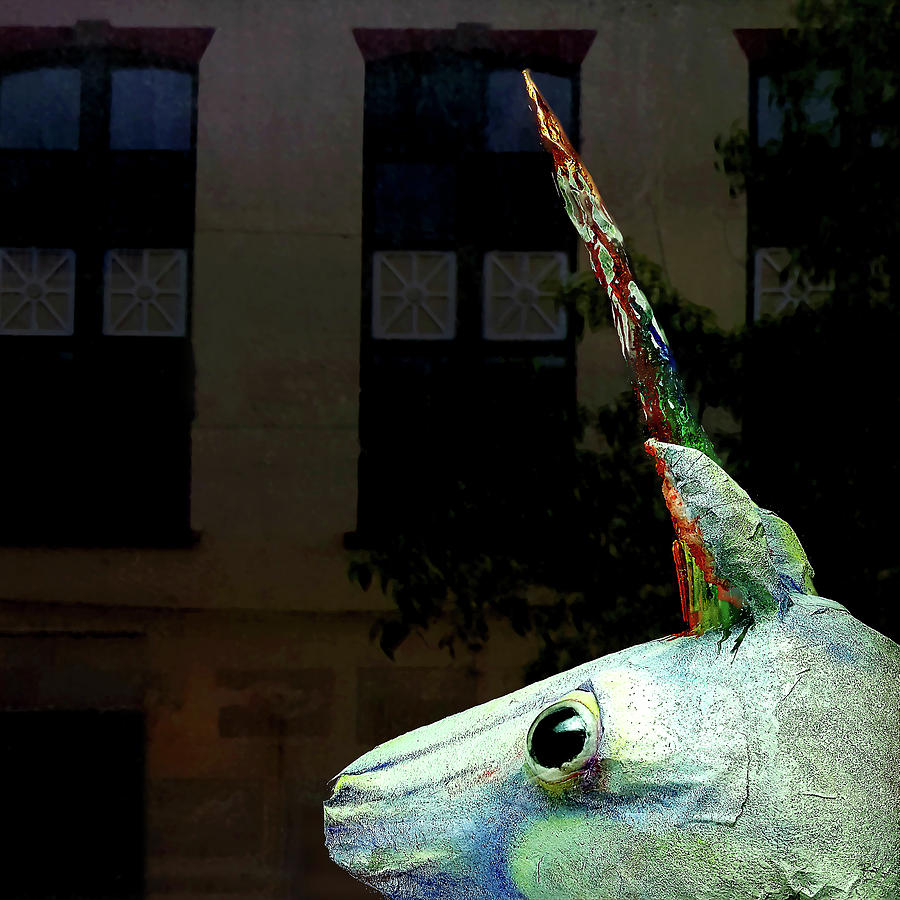 Unicorn in the Window by Tom Romeo