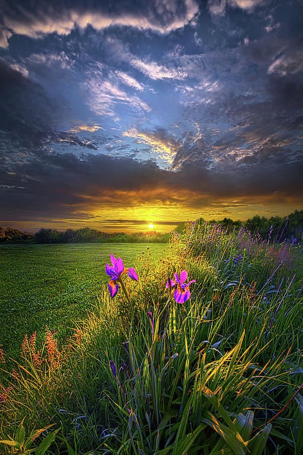 Until The Sun Comes Up by Phil Koch