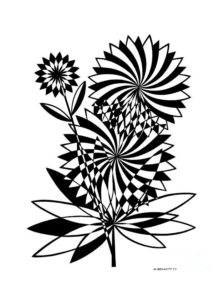 Untitled, Flower  by Manuel Bennett