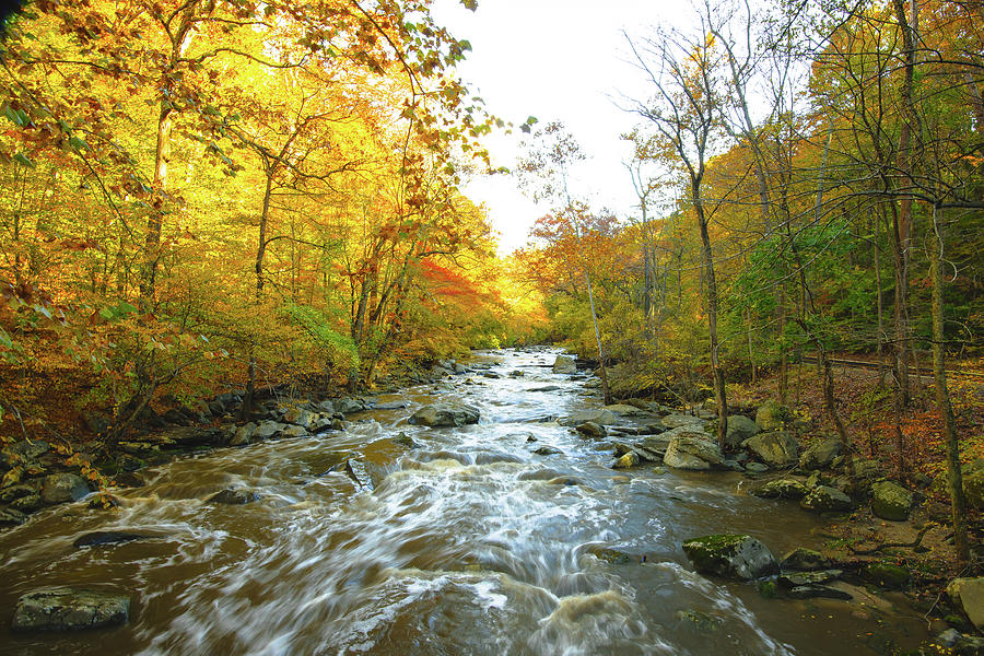 Up a Creek in the Fall by Jeff at JSJ Photography