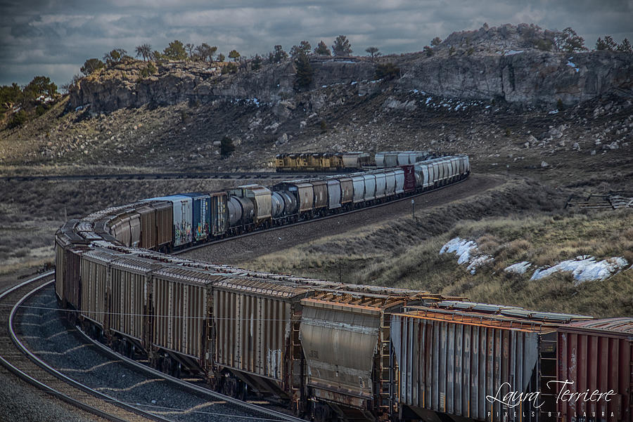 Trains Photograph - UP Freight by Laura Terriere