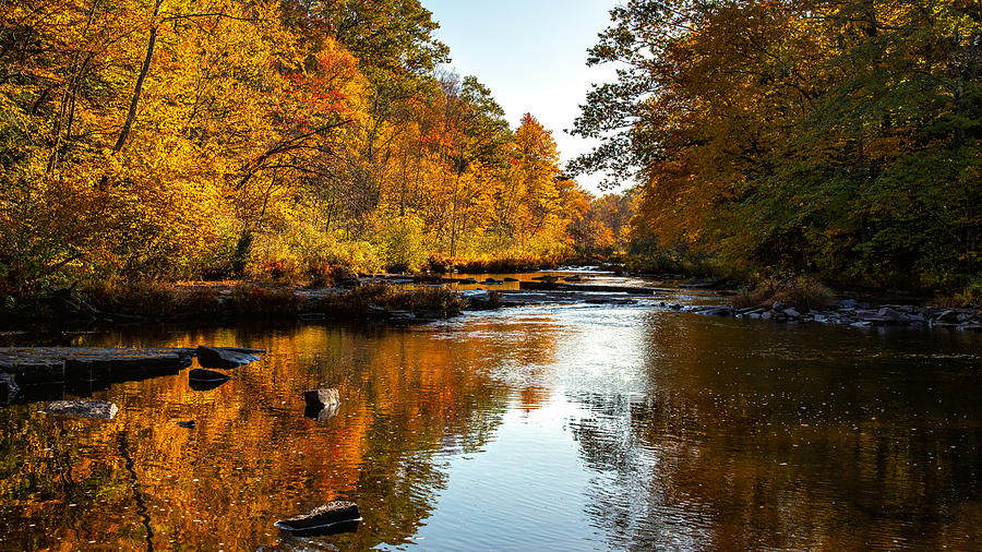 Up River by Rod Best