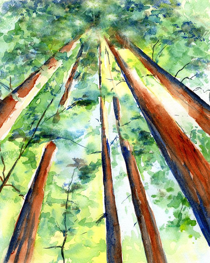 Up through the Redwoods by Carlin Blahnik CarlinArtWatercolor
