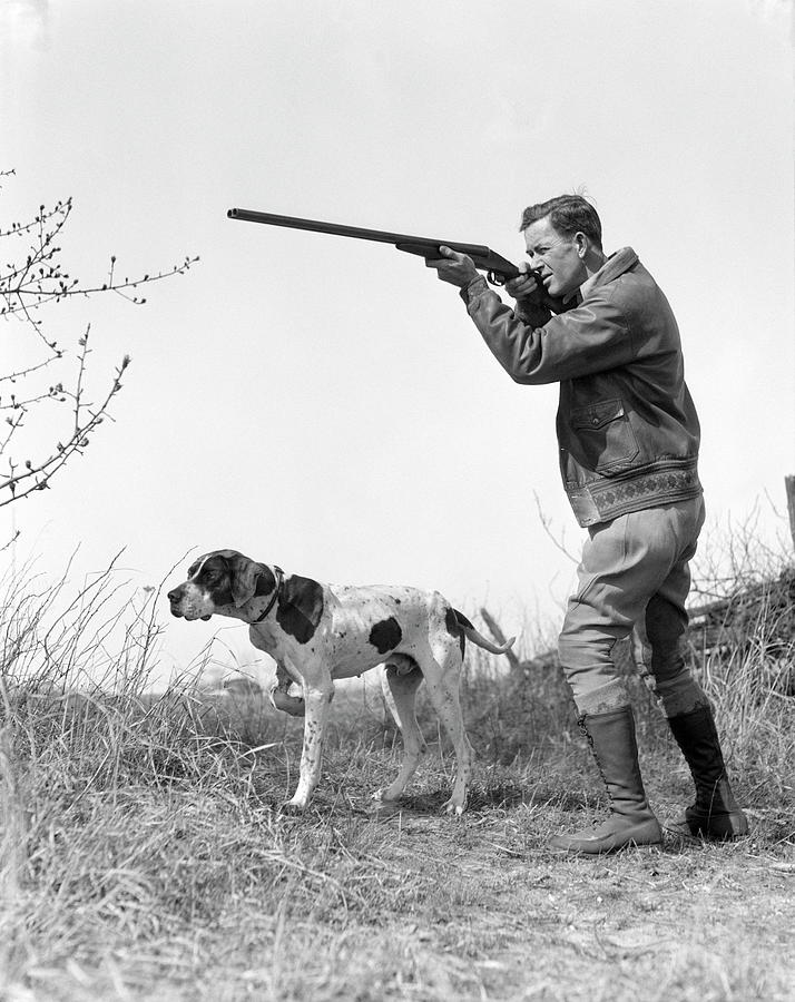 Upland Bird Hunter With Pointer Dog Photograph by H. Armstrong Roberts
