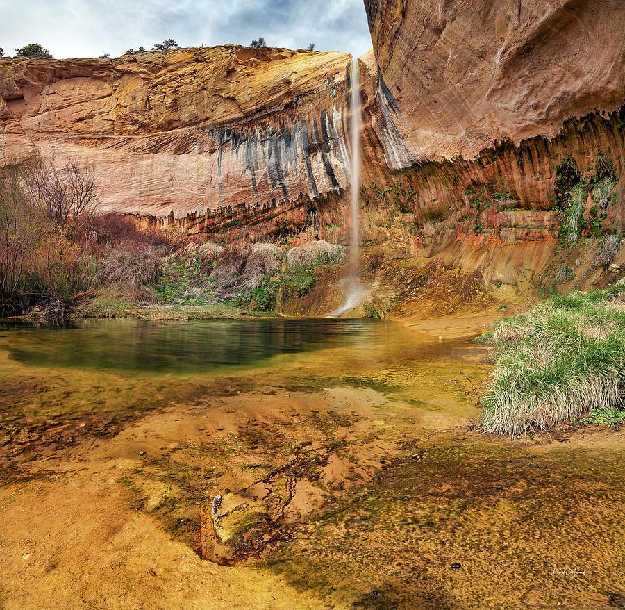 Nature Photograph - Upper Calf Creek Falls Utah by Leland D Howard