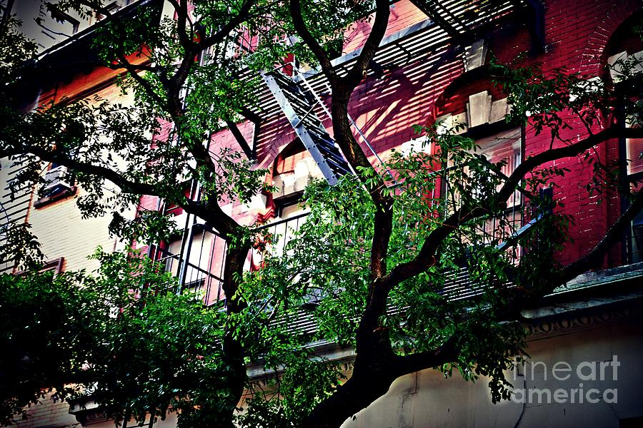Upper West Side Summer Day Photograph