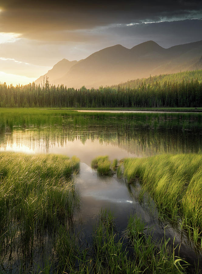 Upper Whitefish Golden Light / Whitefish, Montana  by Nicholas Parker