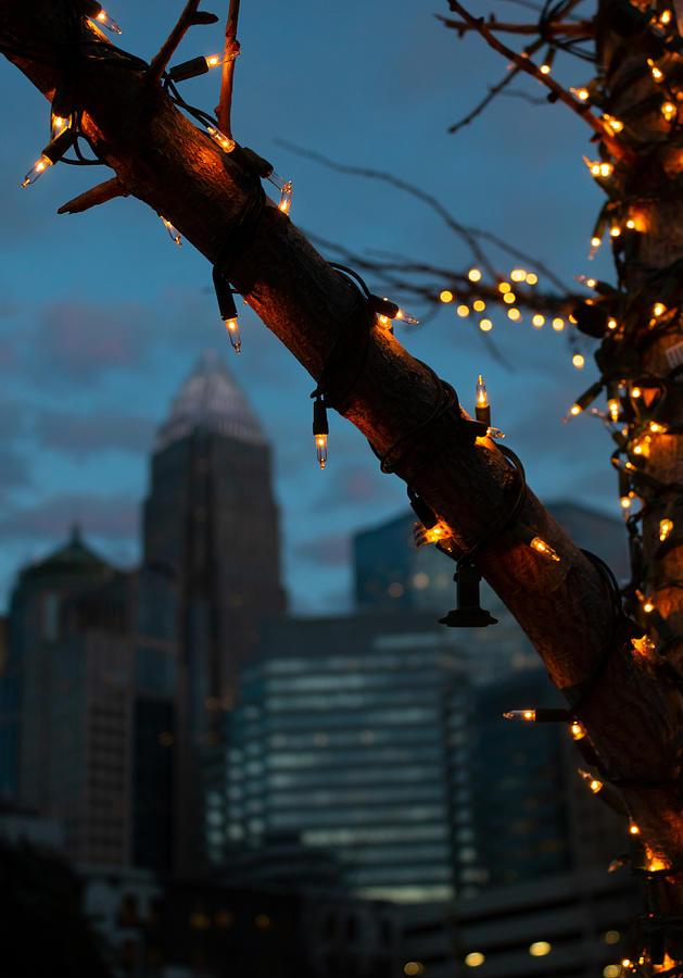 Uptown Holiday Lights Photograph