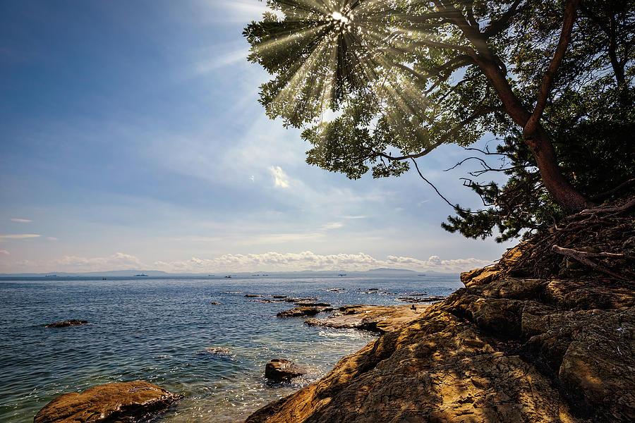 Uraga Shores by William Chizek