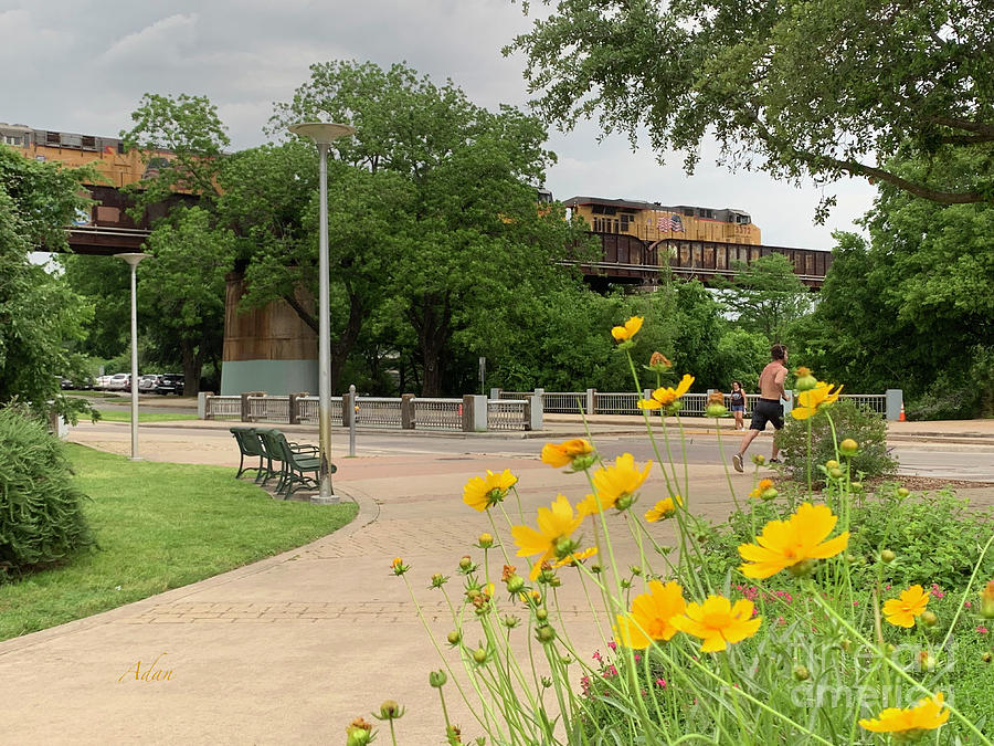 Urban Pathways Butler Park At Austin Hike And Bike Trail With Train Photograph