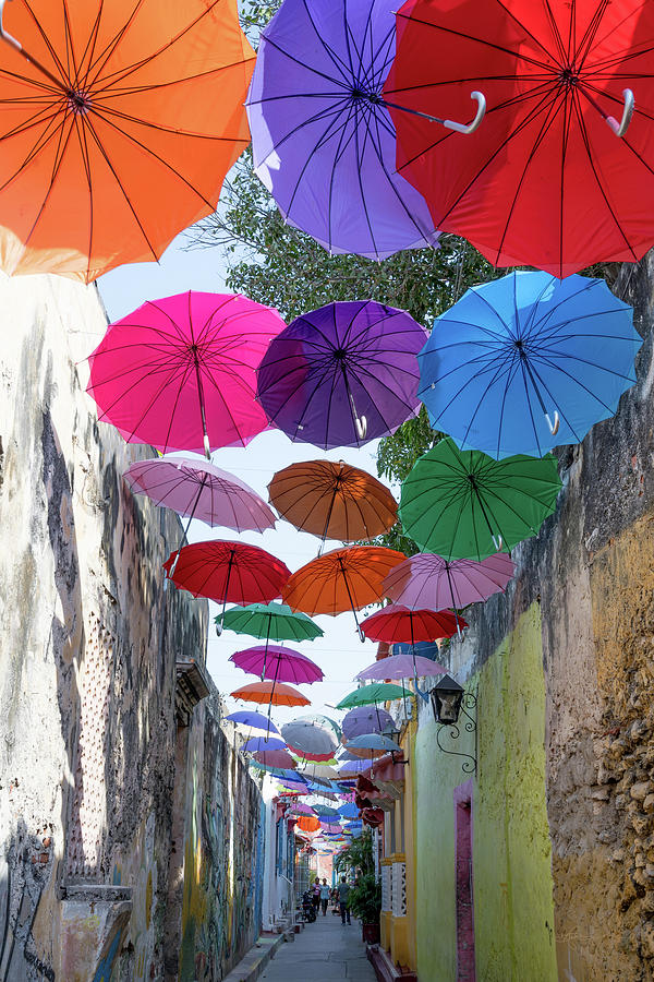 Urban Umbrellas by Renee Sullivan