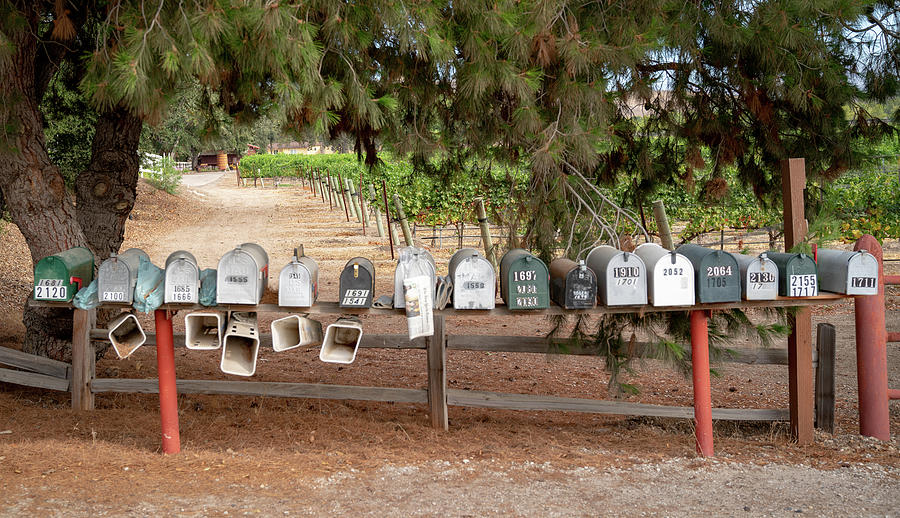 US Mail Boxes by Michael Hope