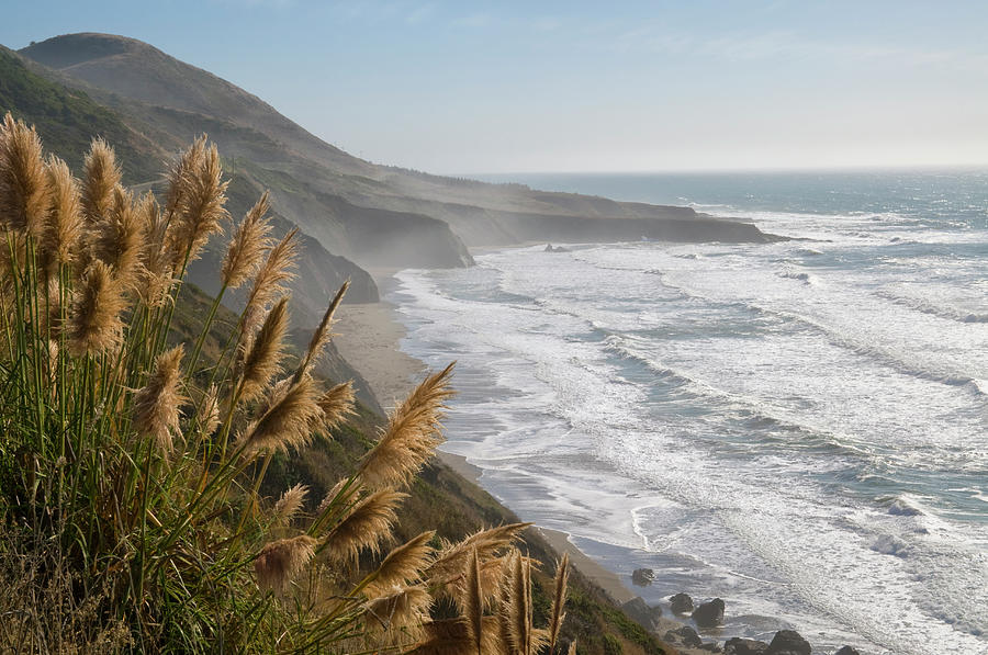 Usa, California, Mendocino Coast Photograph by Gary J Weathers
