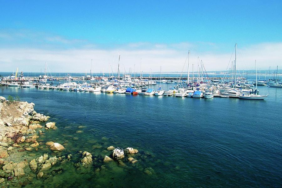 Usa, California, Monterey, Marina Photograph by Medioimages/photodisc