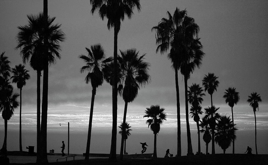 Usa, California, Venice, Venice Beach Photograph by John Livzey