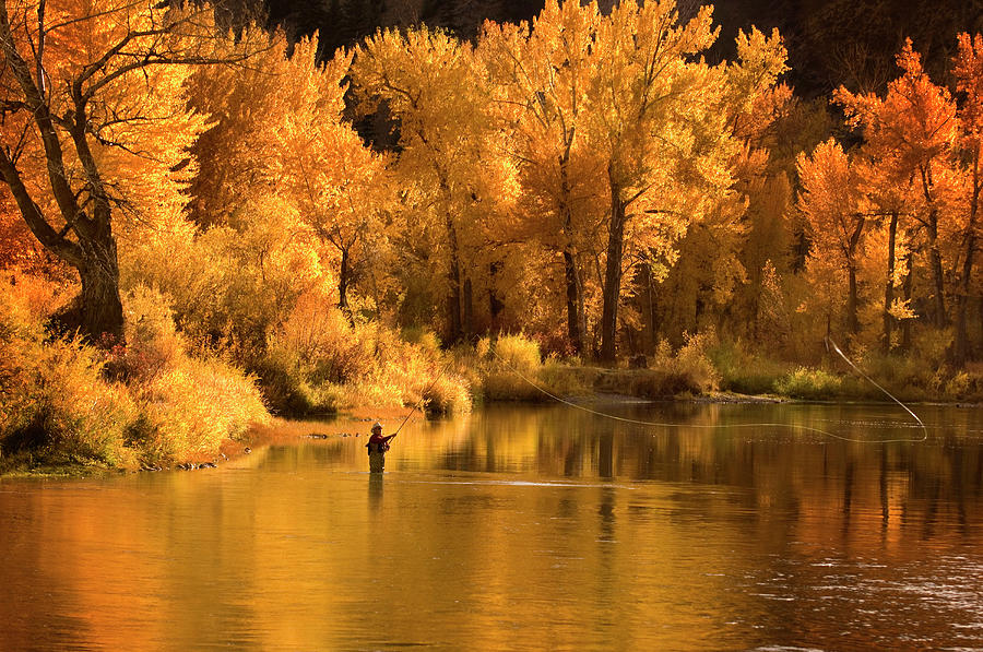 Usa, Idaho, Salmon River, Mature Man Photograph by Steve Bly