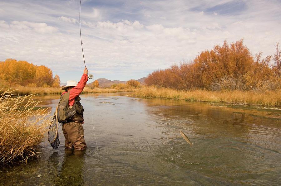 Usa, Idaho, Silver Creek, Mature Man Photograph by Steve Bly