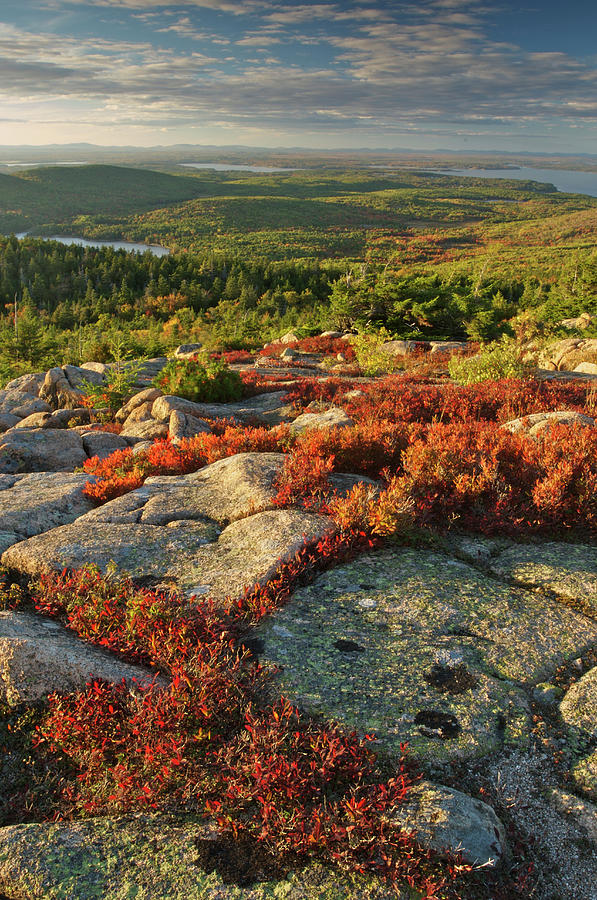 Usa, Maine, Acadia National Park Scenic Photograph by Tony Sweet