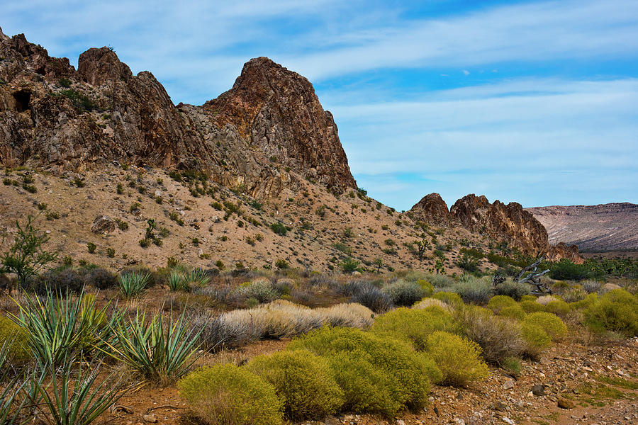 Calico Hills Photograph - Usa, Nevada Las Vegas Red Rock National by Bernard Friel