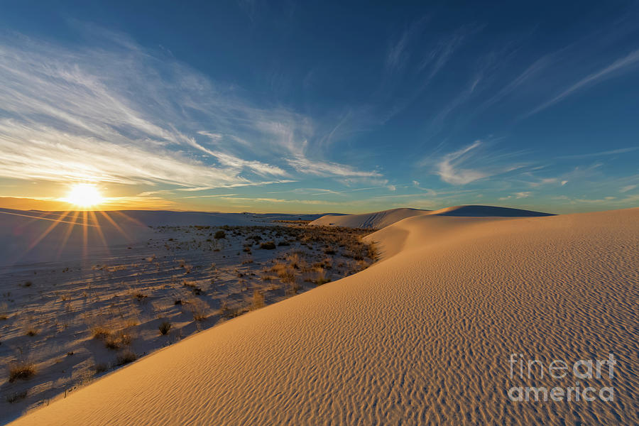 Usa, New Mexico, Chihuahua Desert Photograph by Westend61