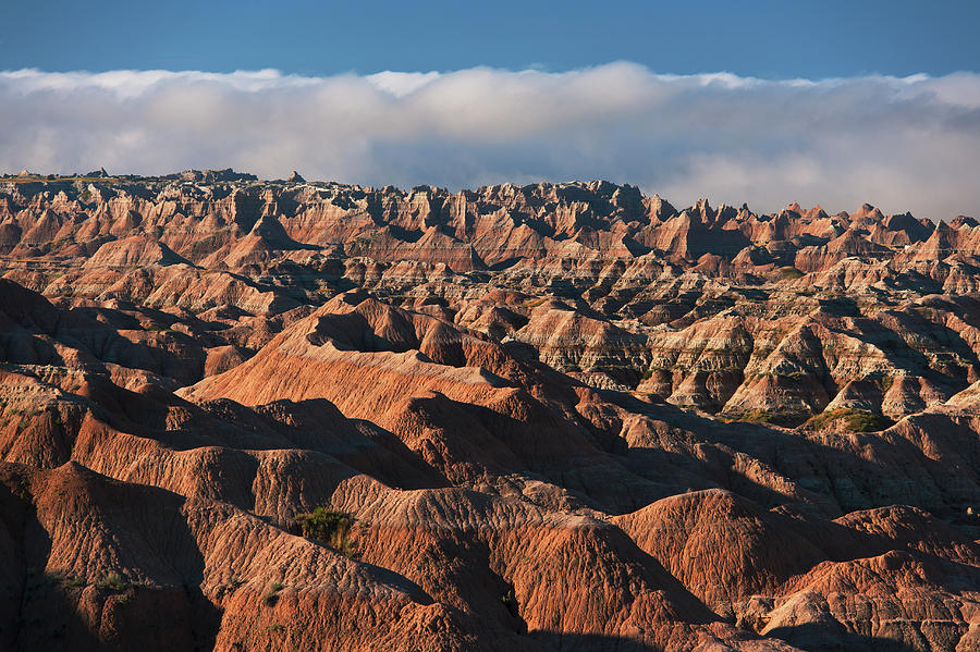 Usa, South Dakota, Mountains In Morning Photograph by Tetra Images