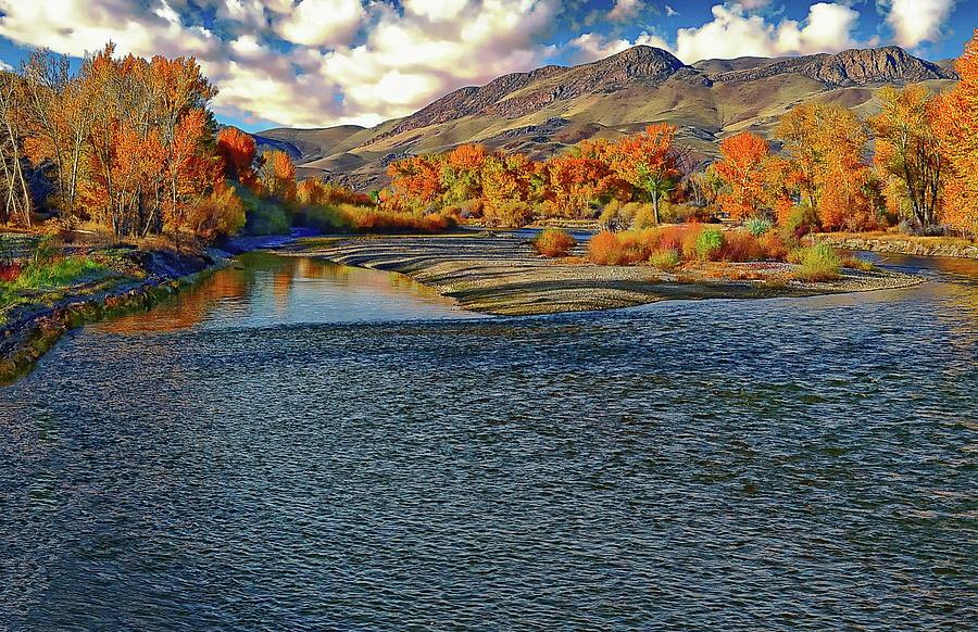 Utah's Salmon River by Anthony Dezenzio