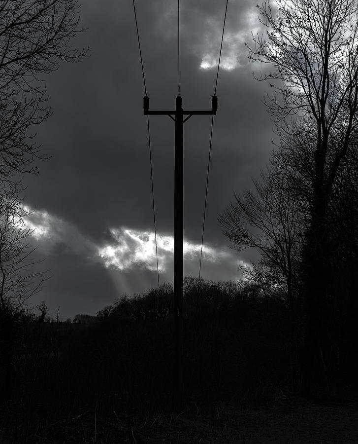 Utility Pole Monochrome by Scott Lyons