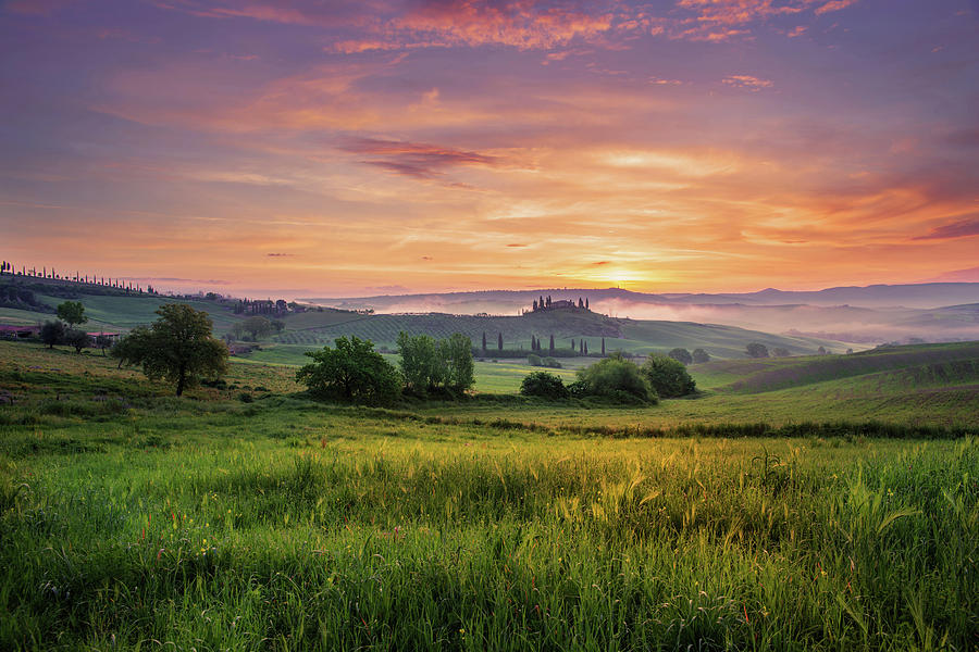 Val d'Orcia  by Yuri San