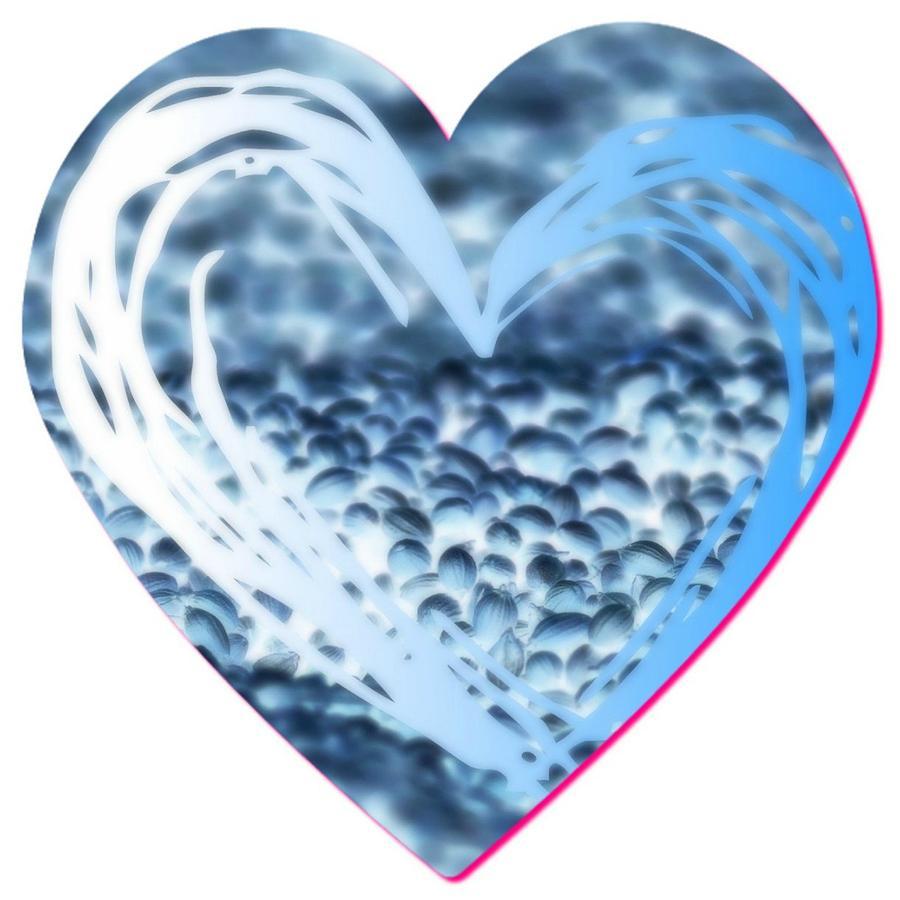 Valentine Heart Mixed Media