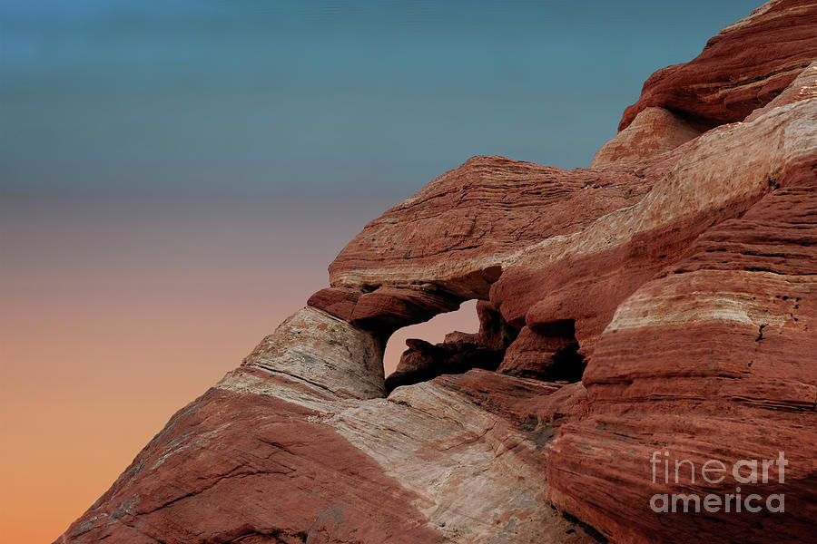 Valley of Fire Beauty by Sandra Bronstein