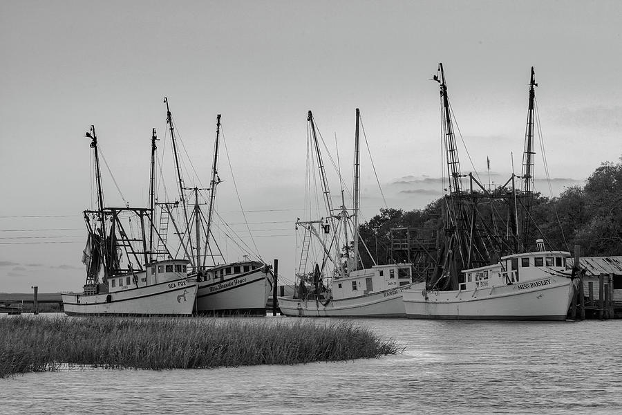 Valona Fleet in Black and white 2 by Kenny Nobles