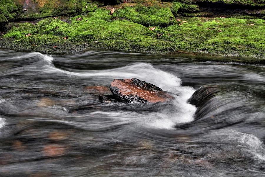 Van Campens Brook II by Dawn J Benko