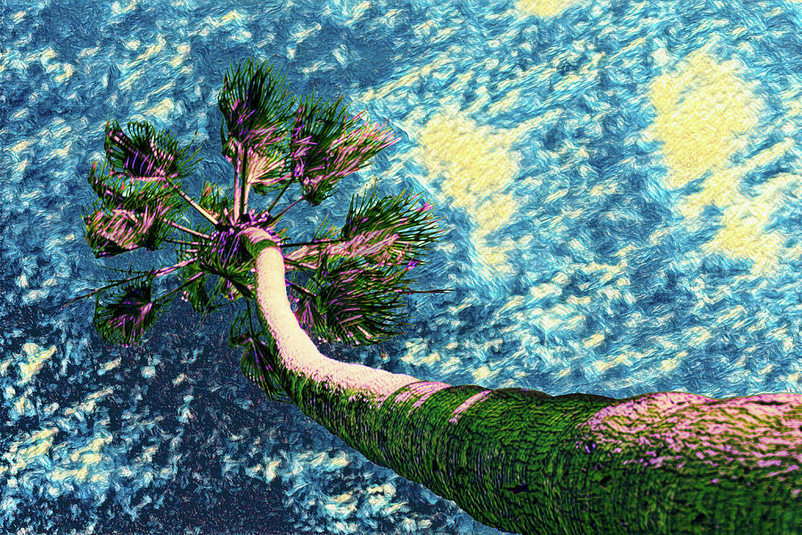 Van Goghs Palm Tree by Scott Campbell