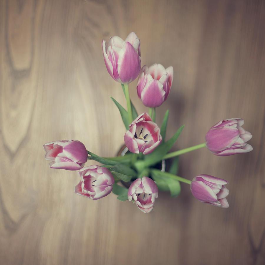 Vase Full Of Happiness Photograph by Paula Daniëlse