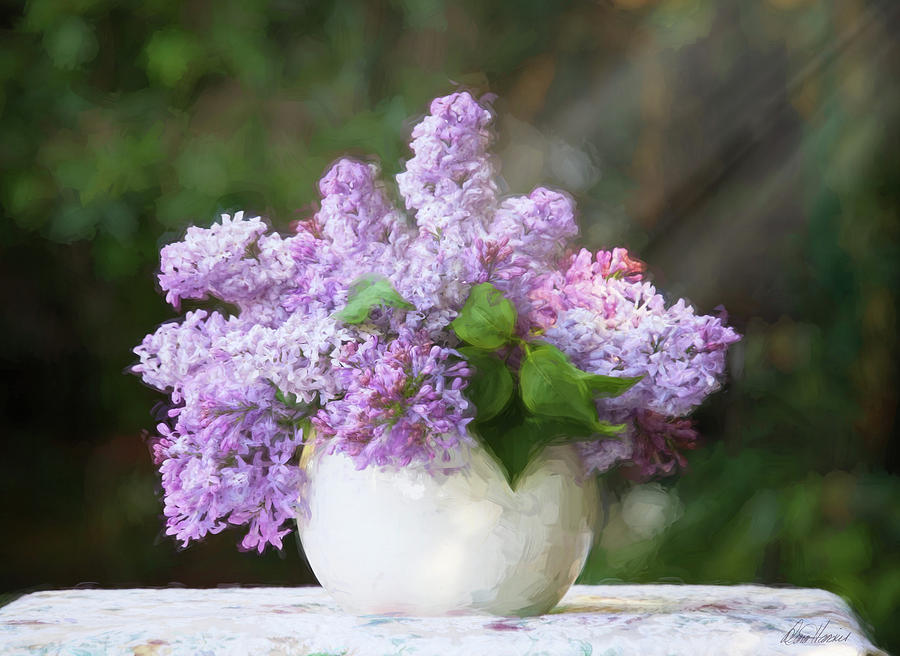 Vase Of Lilacs by Diana Haronis