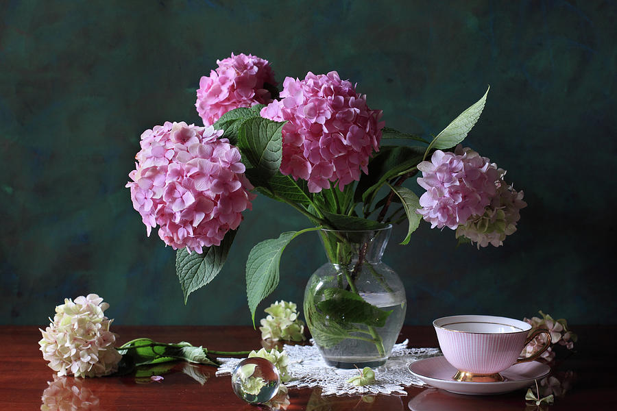 Vase Photograph - Vase With Hortensia Flowers by Panga Natalie Ukraine