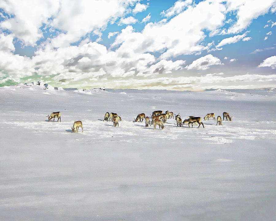 Vatnajokull Glacier Scenic by Anthony Dezenzio
