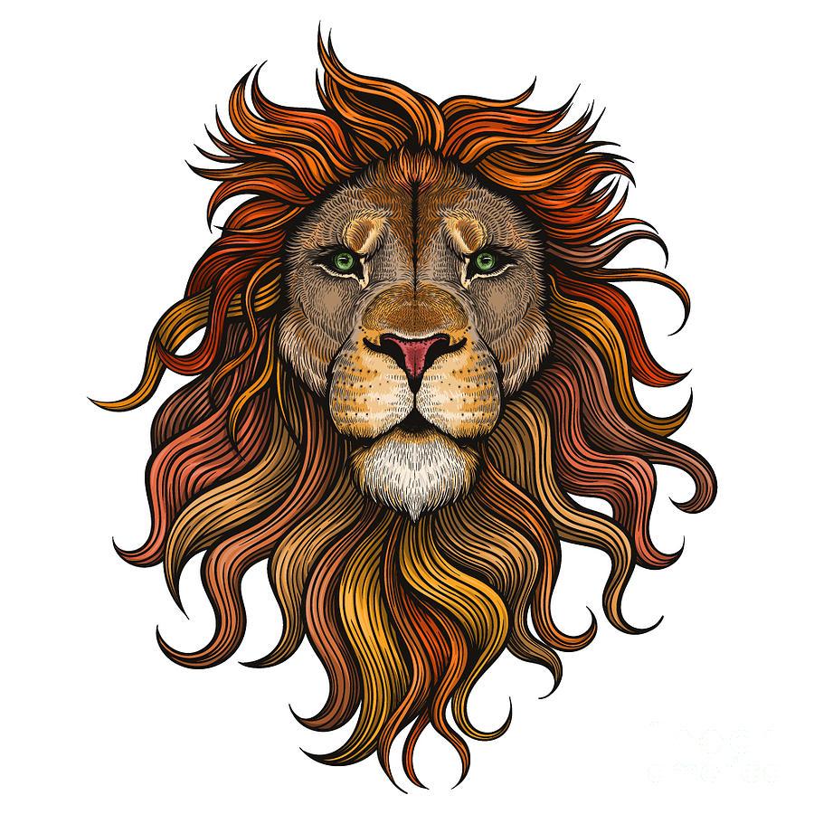 Leader Digital Art - Vector Color Lion Illustration by Julia Waller