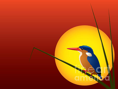 Feather Digital Art - Vector Illustration Of A Malachite by Johan Swanepoel