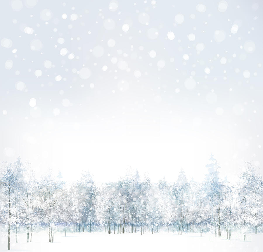 Forest Digital Art - Vector Of Winter Scene With Forest by Rvika