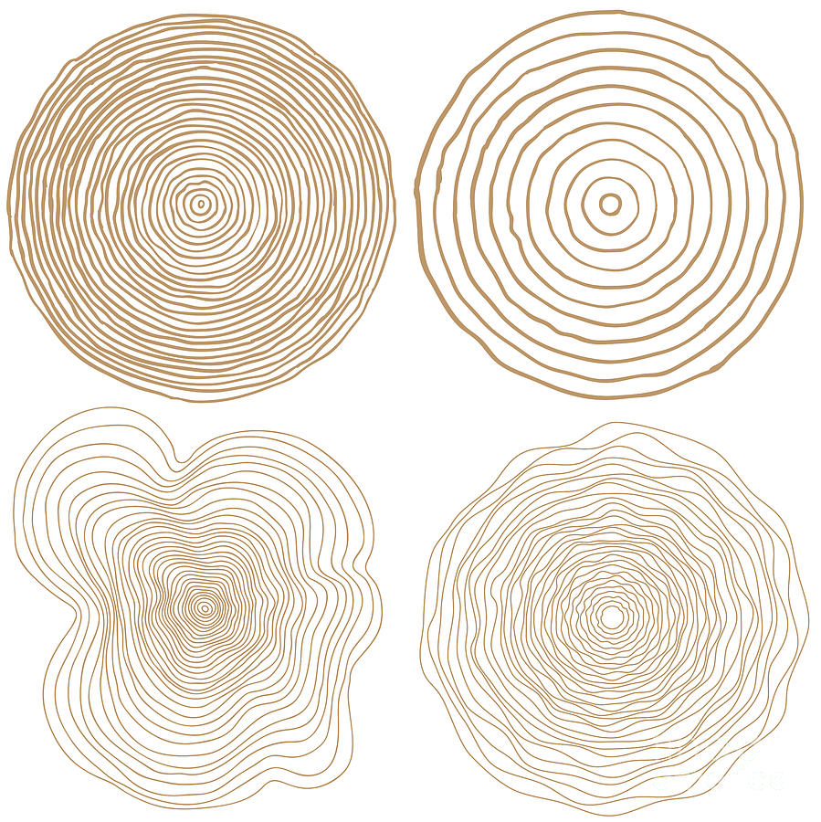Vector Tree Rings Background And Saw Digital Art by Tigerstrawberry