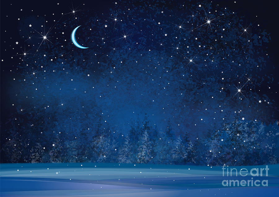Magic Digital Art - Vector Winter Wonderland Night by Rvika