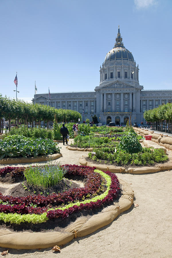 Vegetable Display At City Hall In San Photograph by David Clapp