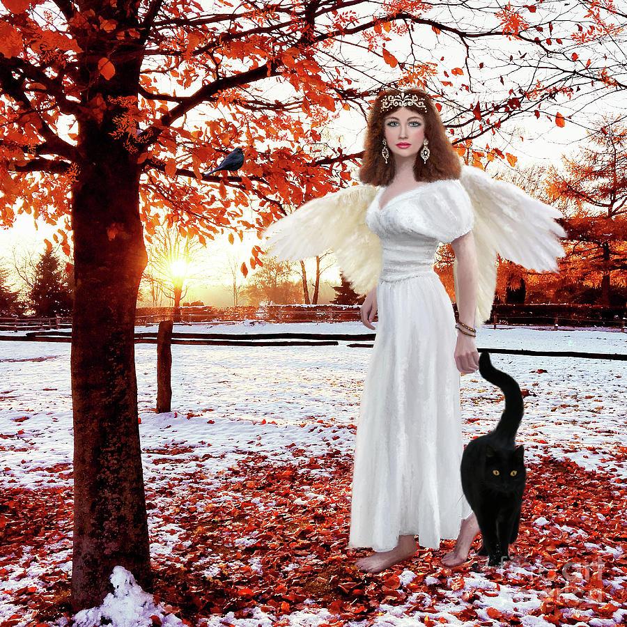 Venus by Anne Vis