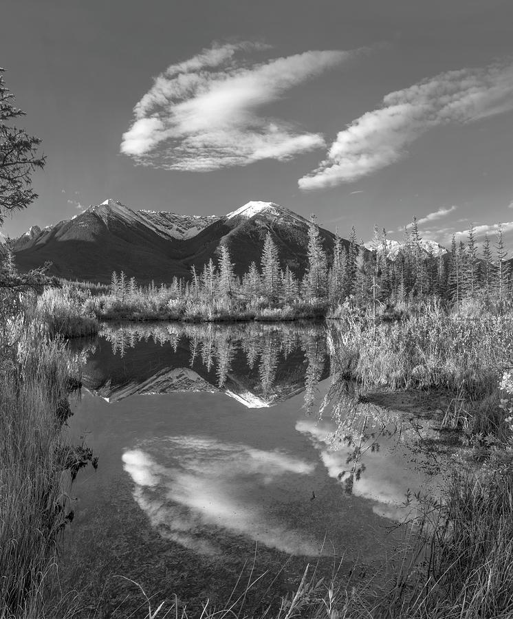 Vermilion Lakes Banff National Park Photograph by Tim Fitzharris