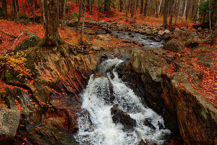 Vermont Autumn Stream Horizontal by Raymond Salani III