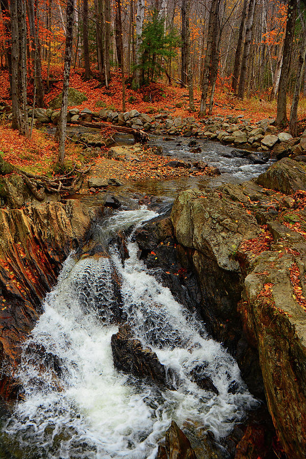 Vermont Autumn Stream  by Raymond Salani III