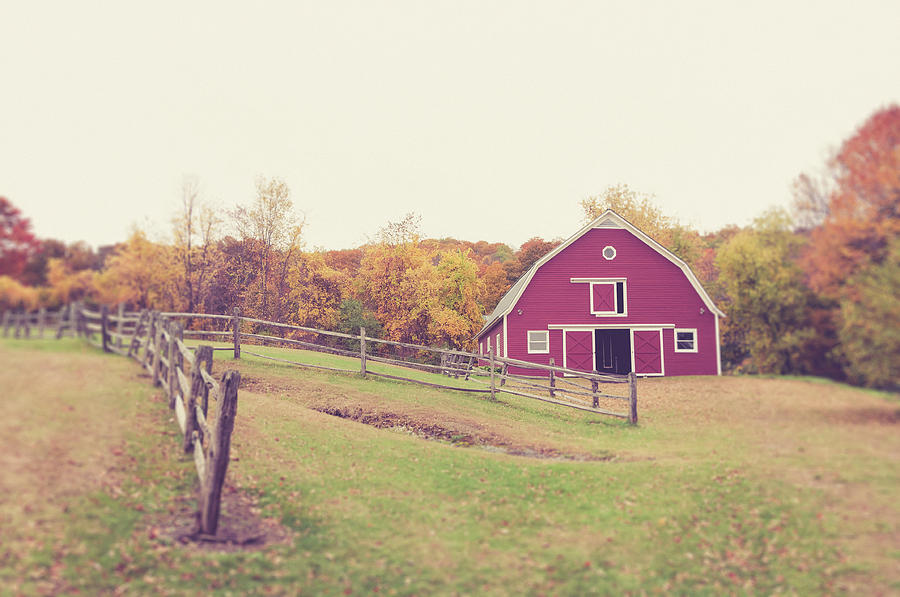 Vermont Farm Red Barn in Autumn by Joann Vitali