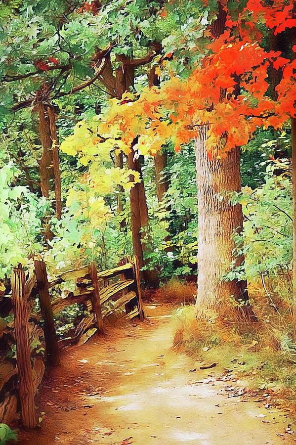Vermont, Landscape - 06 by Andrea Mazzocchetti
